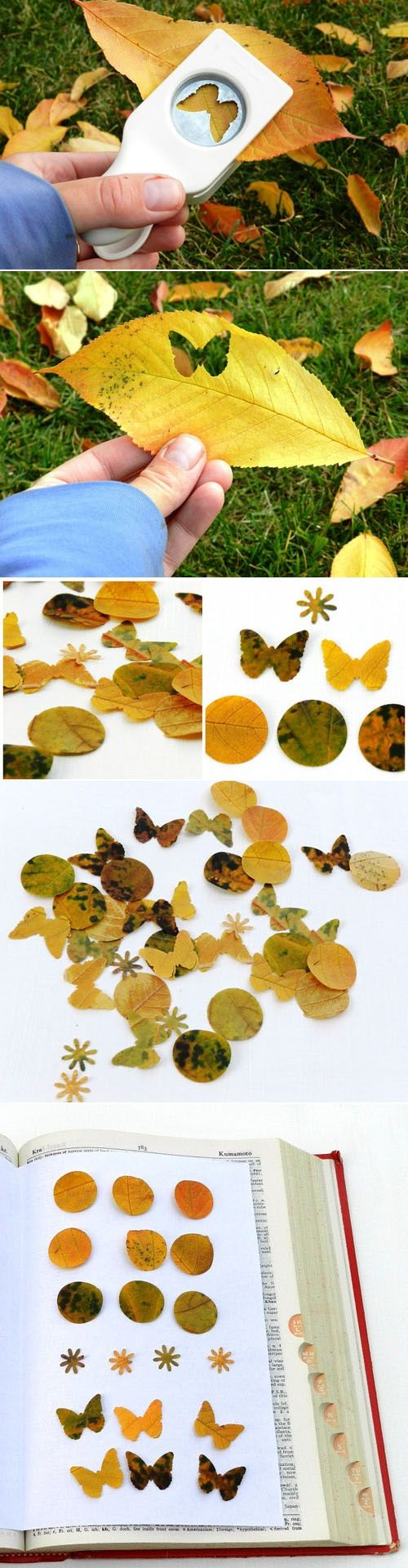 Friday Fab Finds ~ Autumn Leaves Confetti