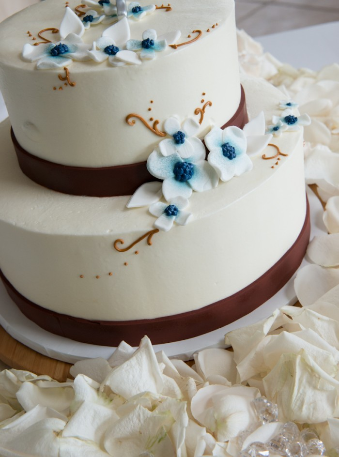 Chocolate Brown and Blue Wedding, Small Budget Wedding, Backyard Wedding, OC Wedding