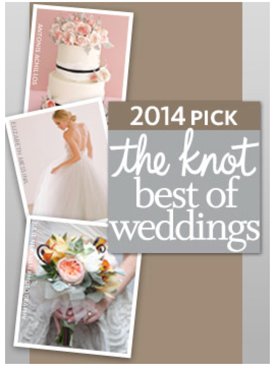 The Knot Best of Weddings 2014 Winner