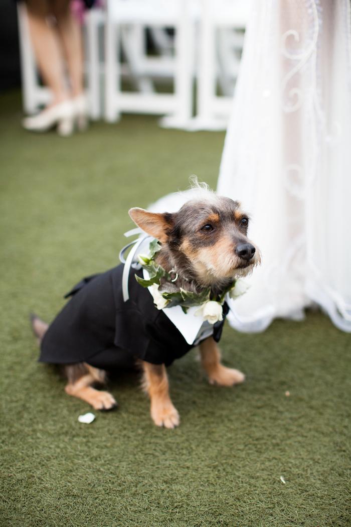 LA Wedding, Los Angeles Wedding, Chic Los Angeles Wedding, Rooftop Wedding, Summer Wedding, Los Angeles Wedding Planner, Wedding Designer Los Angeles